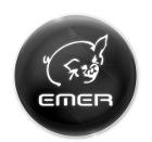 589da4ca1b8f6emer_logo.png
