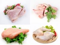 Mięso z kurczaka