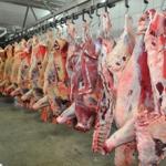 Ćwierćtusze wołowe chłodzone z krów, jałówek i byków