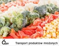 Transport produktów mrożonych