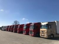 Import/eksport produktów spożywczych z Polski do UE i dystrybucja