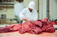 Elementy mięsa końskiego