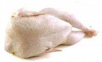 Tuszka z kurczaka bez podrobów świeża klasa A